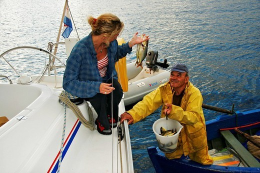 In the bay of Donji Molunat Fisherman Donco brings fresh sea_fish on board, Adria, Croatia : Stock Photo