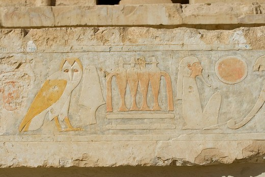 Hieroglyphs on the walls of the Central Court, Temple of Hatshepsut, West Bank, Luxor, Nile Valley, Egypt, Africa : Stock Photo