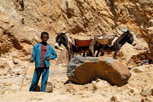 Boy with two loaded donkeys in a quarry near Axum Ethiopia : Stock Photo