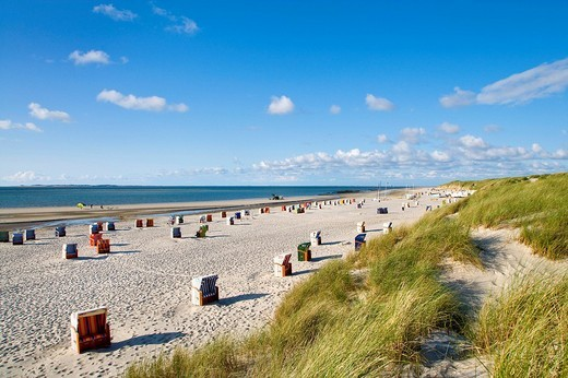 Beach and dunes, Kniepsand, Norddorf, Amrum, North Frisia, Schleswig_Holstein, Germany : Stock Photo