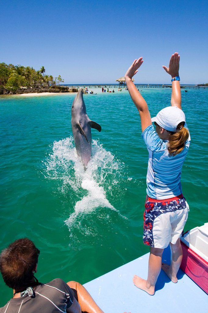 Stock Photo: 1848-251608 School girl training a dolphin during a biology lesson with a dolphin trainer in Anthony´s Key Resort, Roatan, Honduras, Central America