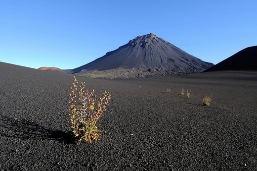 Stock Photo: 1848-251790 Pico de Fogo Volcano, Fogo Island, Cape Verde Islands, Africa