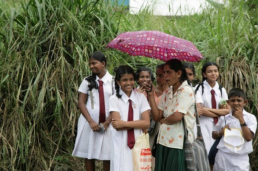 Children dressed in school uniforms waiting at a bus stop, Godagama, Sri Lanka, South Asia : Stock Photo