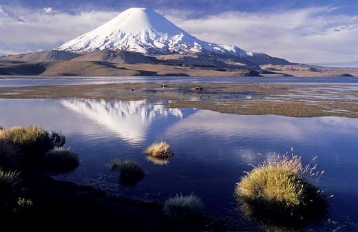 Volcanoe Parinacota 6342 m and Lago Chungara, Lauca National Park, Chile : Stock Photo