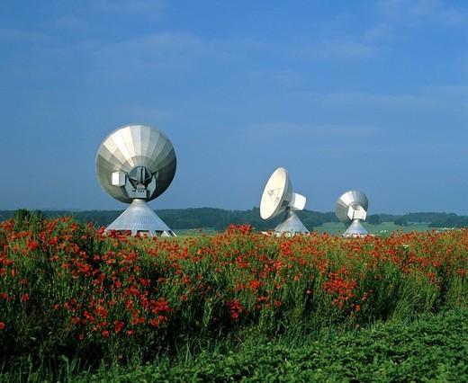 Antennas of the Satellite Earth Station Raisting, poppy field, Upper Bavaria, Bavaria, Germany : Stock Photo
