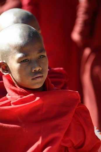 Stock Photo: 1848-26129 Young Buddhist monk, Burma Myanmar, Southeast Asia