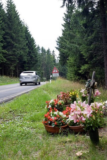 Flowers for a road casualty on a country road, Hesse, Germany, Europe : Stock Photo