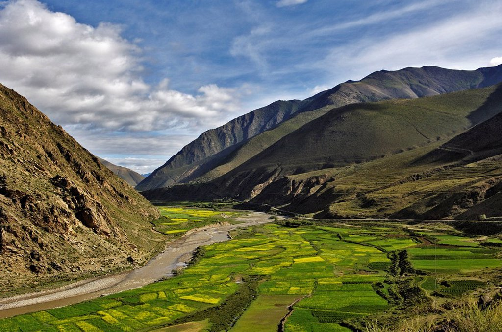Stock Photo: 1848-26163 River, fertile valley, Tibet