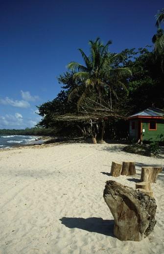 Playa Cahuita, National park Cahuita, Costa Rica, Central America : Stock Photo