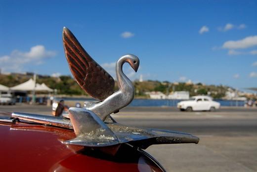 Detail, vintage car in Havana, Cuba, Caribbean, Americas : Stock Photo