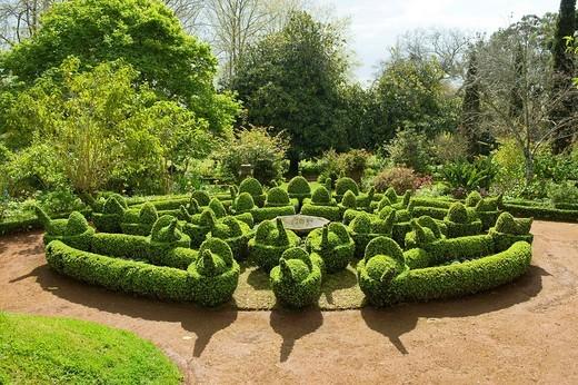 Blandy´s Garden, Funchal, Madeira, Portugal : Stock Photo