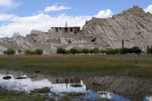 Palace and monastery of Shey with fish pond of the monastery, Ladakh, India, Himalayas, Asia : Stock Photo