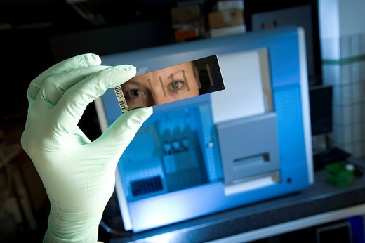 Female laboratory assistant with gene chip and reading device for sequencing and gene expression profiling, Max_Planck_Institute for molecular genetics, AG Kardiovaskulaere Genetik, Berlin, Germany, Europe : Stock Photo