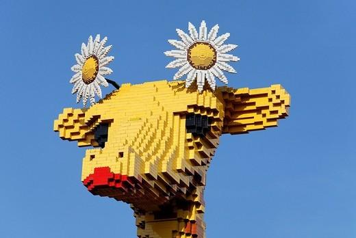 Head of a giraffe made of Lego bricks, Legoland Discovery Center Duisburg, inner harbor, Duisburg, Ruhrgebiet area, North Rhine_Westphalia, Germany, Europe : Stock Photo