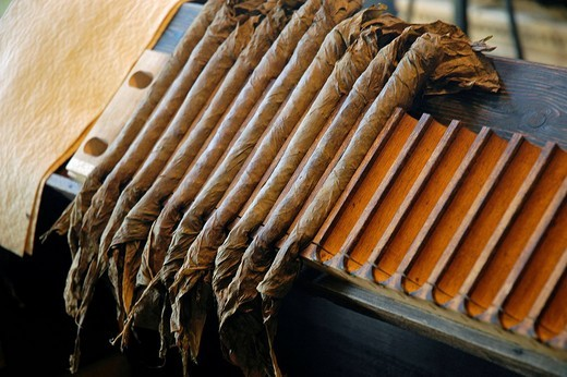 Stock Photo: 1848-270294 Cigar production, tabacco factory, Westphalian Open_Air Museum Hagen, Road of Industry Culture, North Rhine_Westphalia, Germany