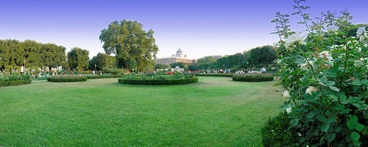 City park in Vienna : Stock Photo