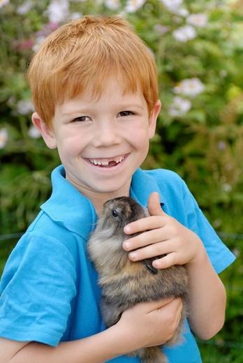 Stock Photo: 1848-271141 Little boy holding a European Rabbit Oryctolagus cuniculus