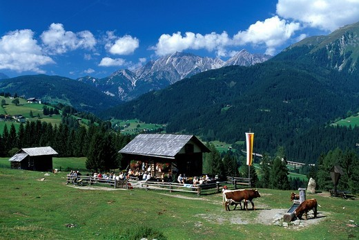 Inn on an alpine pasture, Lesachtal Valley, Carinthia, Austria, Europe : Stock Photo