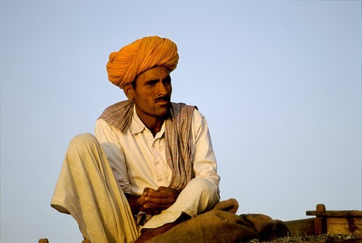 Man sitting at dusk, Pushkar, Rajasthan, India : Stock Photo