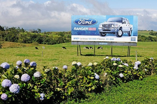 Ford advertisement on a meadow, Costa Rica, Central America : Stock Photo