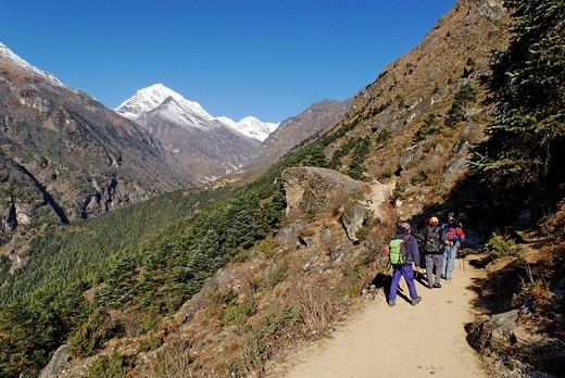 Trekking group at Bhote Koshi valley, Sagarmatha National Park, Khumbu, Nepal : Stock Photo