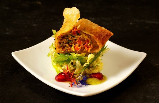 Stock Photo: 1848-30864 Apéro´, fish won ton on thai salad, haute cuisine, La Baroche, Alsace, France, Europe