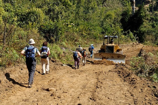 Bulldozing a new road in the rainforest, Kachin State, Myanmar : Stock Photo