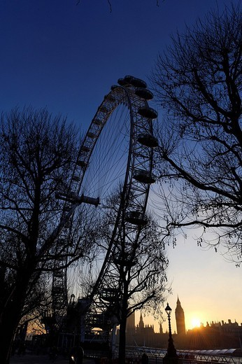 Stock Photo: 1848-38973 The London Eye on South Bank at dusk, London, England, Great Britain, Europe