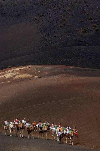 Stock Photo: 1848-39626 Camel ride in National Park Timanfaya Lanzarote Canaries