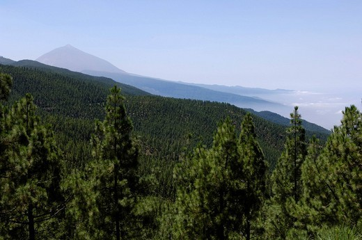 Stock Photo: 1848-39682 Teide in the haze on Teneriffe, Canary Islands, Spain