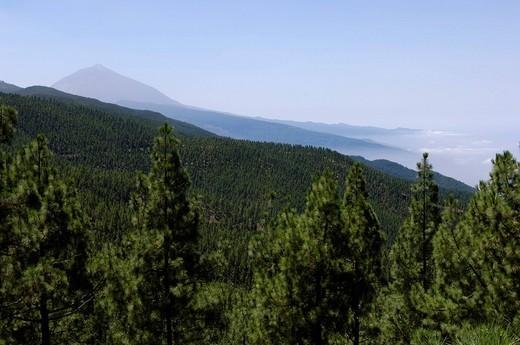 Teide in the haze on Teneriffe, Canary Islands, Spain : Stock Photo
