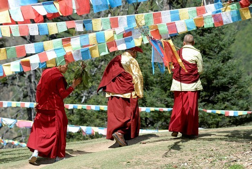 Stock Photo: 1848-400614 Tibetan Buddhist nuns circling a Kora underneath colourful prayer flags printed with mandalas and prayers, forest of Ringa Monastery, Yunnan, Eastern Tibet, China, Asia