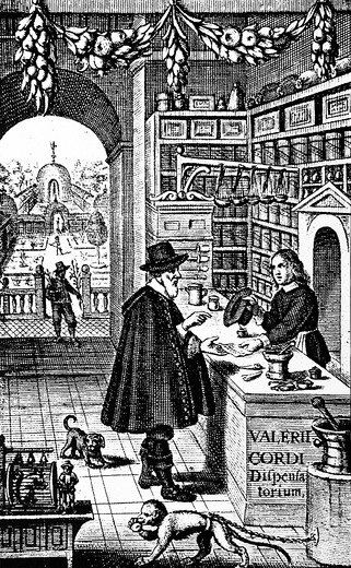 Historic depiction from 1632, representing a pharmacy with herbarium : Stock Photo