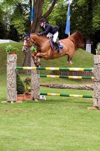 Showjumping, Hippo 2009 horse riding tournament, Munich, Bavaria, Germany, Europe : Stock Photo