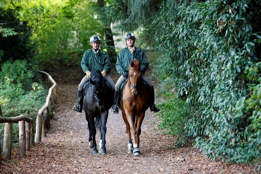 Mounted police patrolling in a wooded area, hiking trail, Germany, Europe : Stock Photo