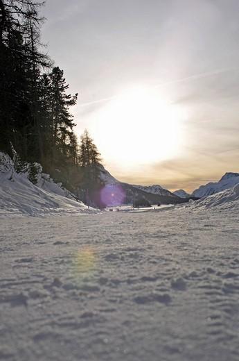 Sils Maria, Engadin, Grisons, Switzerland, Europe : Stock Photo
