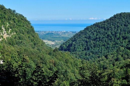 Heavily forested mountains with view over the Caspian Sea, Alborz Mountains, Mazandaran, Iran, Asia : Stock Photo