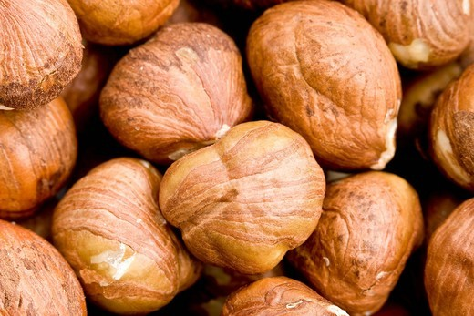 Close up of hazelnut kernels : Stock Photo