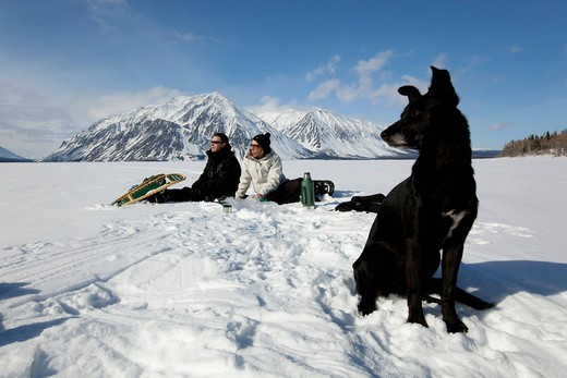 Sled dog, Alaskan Husky, frozen Kathleen Lake, young couple, snow shoes, resting, St, Elias Mountains behind, Kluane National Park and Reserve, Yukon Territory, Canada : Stock Photo