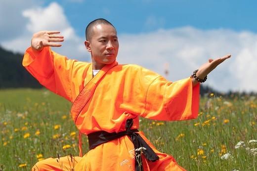 Shaolin Monk : Stock Photo