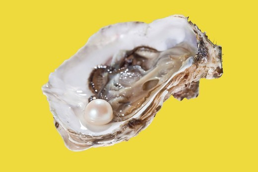 Stock Photo: 1848-417117 Opened oyster with pearl