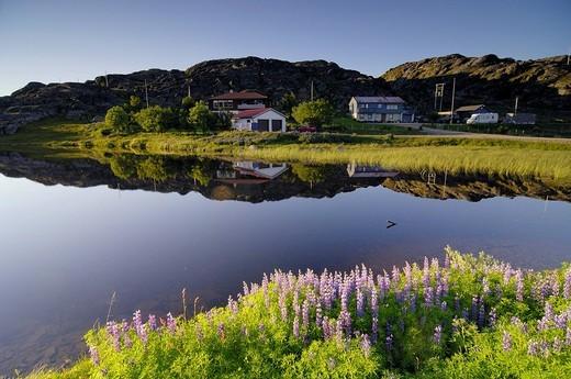 Stock Photo: 1848-41745 Idyllic settlement, Kvalsund, Finnmark, Norway