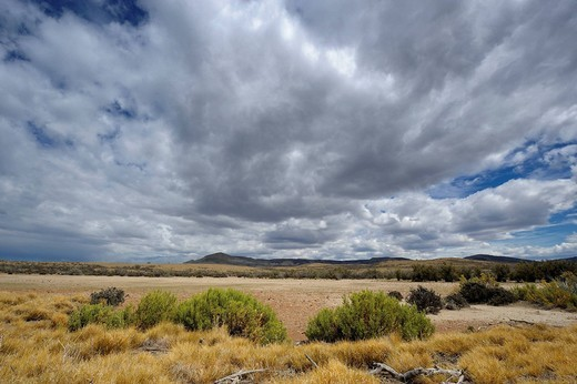 Steppe landscape, Monte Leon National Park, Rio Gallegos, Patagonia, Argentina, South America : Stock Photo