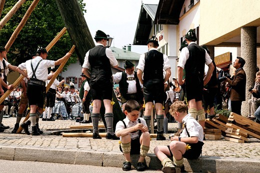 Maypole being raised, Prien, Chiemgau, Upper Bavaria, Germany, Europe : Stock Photo