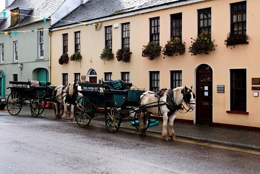 Horses and carriages, Killarney, Ireland, Europe : Stock Photo