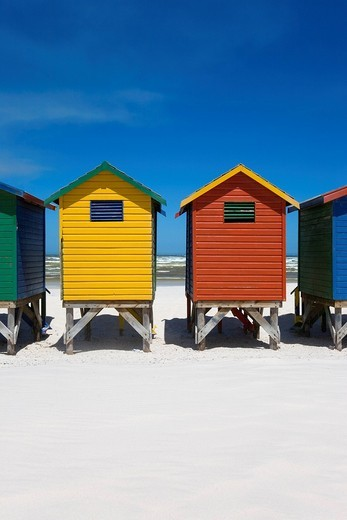 Colorful beach huts on the bach of St. Jaimes, False Bay, Cape Town, Western Cape, South Africa, Africa : Stock Photo