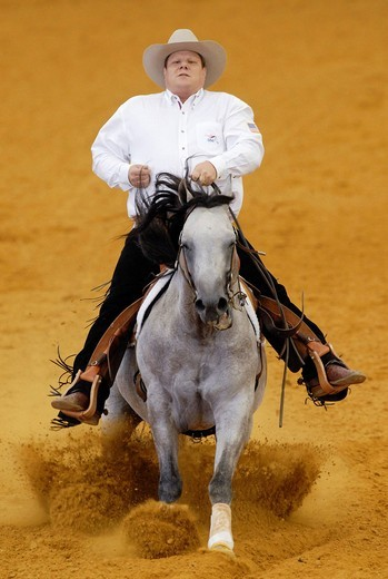 Stock Photo: 1848-422390 Reining, Dell Hendricks, USA, on Starbucks Sidekick, World Equestrian Games 2006 in Aachen, North Rhine_Westphalia, Germany, Europe