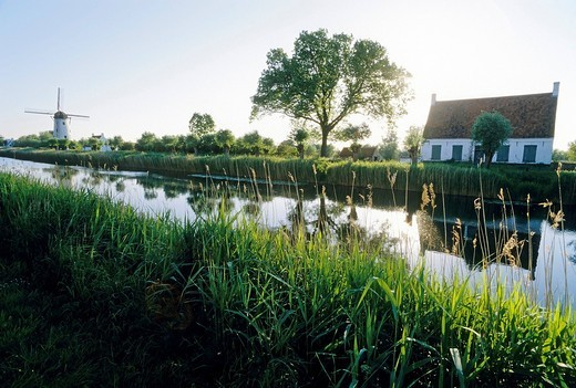 Stock Photo: 1848-425262 Canal Damme_Bruges, typical Flemish landscape, morning mood, West Flanders, Belgium, Europe