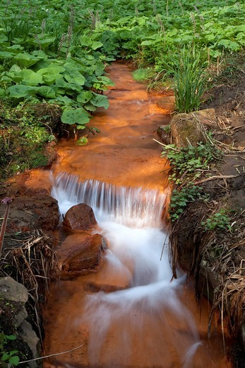 Stock Photo: 1848-425686 Brook or creek with water containing iron, Romberg park, Dortmund, Ruhr Area, North Rhine_Westphalia, Germany, Europe