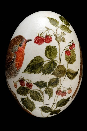 Painted duck egg, image of robin and raspberries : Stock Photo